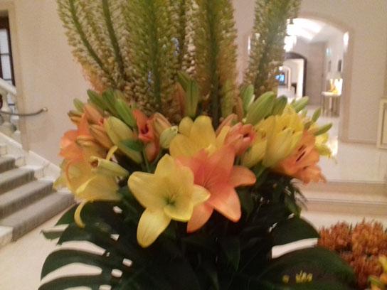 Monteurzimmer Blumen Berlin Pankow