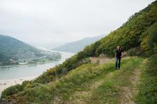 Appartment Rheingau